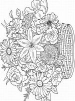 adult-coloring-pages-flowers-20