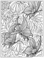 adult-coloring-pages-to-print-9