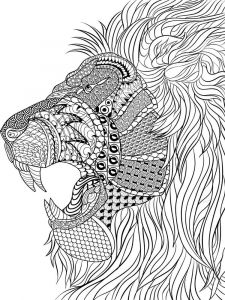 adult-coloring-pages-animals-30