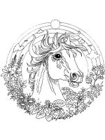 adult-animal-mandala-coloring-pages-2