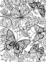 butterfly-coloring-pages-for-adults-10