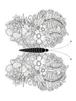 butterfly-coloring-pages-for-adults-7