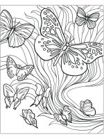 butterfly-coloring-pages-for-adults-9