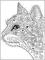 cat-coloring-pages-for-adults-13
