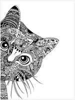 cat-coloring-pages-for-adults-8