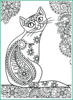 cat-coloring-pages-for-adults-9