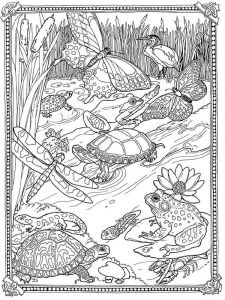 adult-detailed-coloring-pages-4