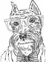 dog-coloring-pages-for-adults-20