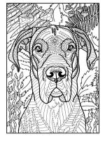 dog-coloring-pages-for-adults-7