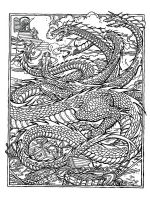 dragon-coloring-pages-for-adults-12