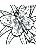 easy-coloring-pages-for-adults-11