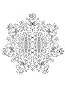 flower-mandala-coloring-pages-adult-11