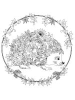 zentangle-Hedgehog-coloring-pages-4