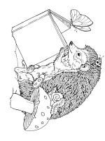 zentangle-Hedgehog-coloring-pages-6