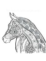 horse-coloring-pages-for-adults-5