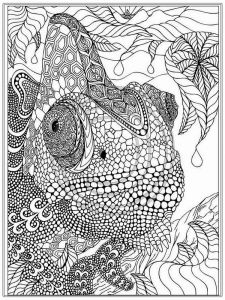 intricate-coloring-pages-for-adults-10