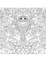 owl-coloring-pages-for-adults-13