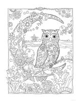 owl-coloring-pages-for-adults-2