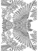 owl-coloring-pages-for-adults-6