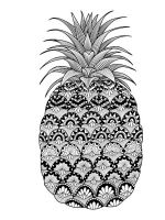 zentangle-Pineapple-coloring-pages-10