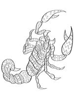 zentangle-Scorpio-coloring-pages-12