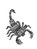 zentangle-Scorpio-coloring-pages-2