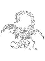 zentangle-Scorpio-coloring-pages-6