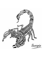 zentangle-Scorpio-coloring-pages-8