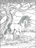 unicorn-coloring-pages-for-adults-11
