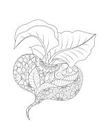 zentangle-Vegetables-coloring-pages-12