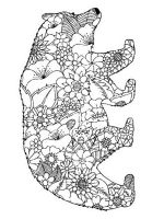 zentangle-bear-coloring-pages-11