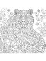 zentangle-bear-coloring-pages-4