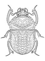 zentangle-beetle-coloring-pages-14