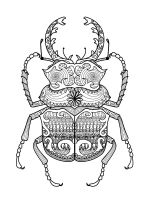 zentangle-beetle-coloring-pages-2
