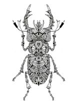 zentangle-beetle-coloring-pages-5