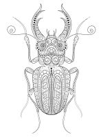 zentangle-beetle-coloring-pages-7