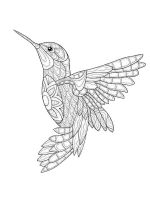 zentangle-birds-coloring-pages-12