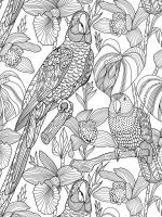 zentangle-birds-coloring-pages-14