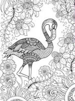zentangle-birds-coloring-pages-15