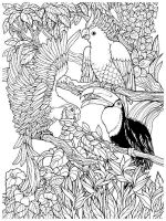 zentangle-birds-coloring-pages-17