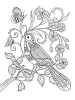 zentangle-birds-coloring-pages-21