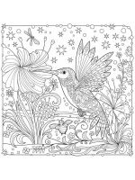 zentangle-birds-coloring-pages-22