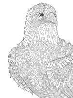 zentangle-birds-coloring-pages-27