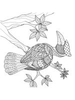 zentangle-birds-coloring-pages-28