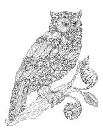 zentangle-birds-coloring-pages-3