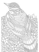 zentangle-birds-coloring-pages-8