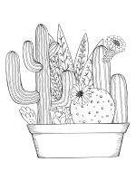 zentangle-cactus-coloring-pages-7