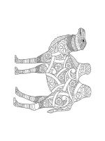 zentangle-camel-coloring-pages-13