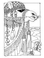 zentangle-camel-coloring-pages-2