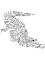 zentangle-crocodile-coloring-pages-5